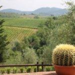 Billede af Agriturismo Le Trappoline