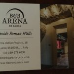 Welcome to B&B Arena di Lucca!