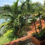 Photo de Fragrant Nature Backwater Resort & Ayurveda Spa