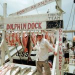 Foto de Dolphin Dock Day Trips
