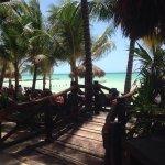Beachfront Hotel La Palapa Foto