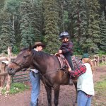 Staff preping son for horse ride