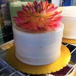 Carrot cake topped w/ edible flower!