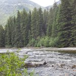 Trout fishing on Boulder River
