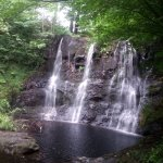 This waterfall is along the forest trail just down the road from Lurig View