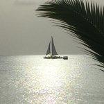 Photo de Cottages By The Sea