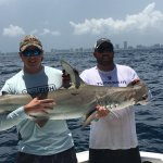 6' hammerhead caught on July 3, 2016, caught with Mark the Shark!