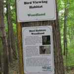 Bird Viewing habitat