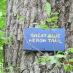 One of the trails, Great Blue Heron Trail