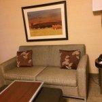 Foto di Holiday Inn Express Pullman