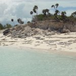 Little Water Cay--iguanas on the other side of the hill...