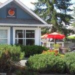 Cedar's Coco Cafe showing back patio