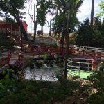 Foto de Timber Falls Adventure Golf