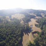 Cedars Mount View Foto