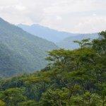 Foto de Rhododendron Dell Exotic Resort