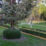 Jardines y recepción de Gamma Pachuca