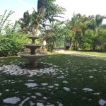 Hacienda El Jibarito Foto
