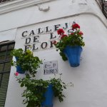 Photo de Calleja de las Flores