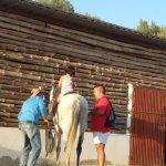 El monitor de caballos, increible y encantador. De espaldas para preservar su intimidad.