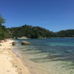 Dolphinbay Beachfront  & Dive Resort Foto