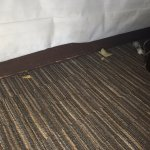 Under our bed, the day after I asked that our room be cleaned.