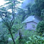 Rhododendron Dell Exotic Resort Foto