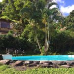 Cute little pool with another bungalow behind