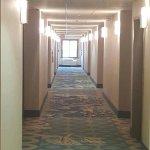 Well Lit Guestroom Corridor