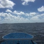 Photo de AWS Charters, Key West Flats Fishing