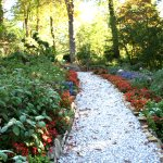 Fall garden paths
