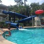 Barony Beach Gardenia Pool