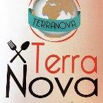 Terranova 33