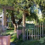 Caretaker's cottage with rustic fencing and meadow garden