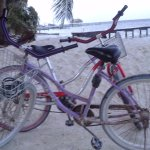 Free transportation from Sea Dreams! All you will need on Caye Caulker!