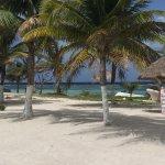 Foto de The Western Caribbean Fly Fishing School