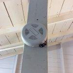 No battery in smoke detector