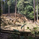 Matang Wildlife Centre Foto