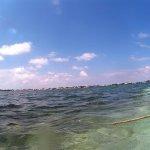 La costa de Tulum vista desde el arrecife