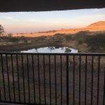 Photo of Nxala Ranch