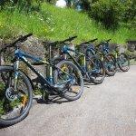 Gratis Mountainbikes