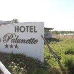 Photo de La Palunette