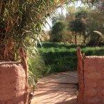 jardins com os caminhos originais preservados