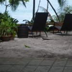 Foto de Ylang Ylang Beach Resort