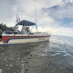 Private Boat Tours From Santa Teresa