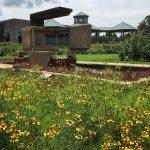 Norfolk Botanical Garden