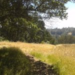 Photo of Tilden Regional Park