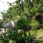 Foto de Casa Nemo Beach Resort and SPA