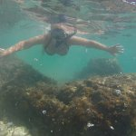 snorkelling after burger and beer