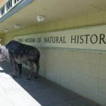 The front entrance to the Idaho Museum of Natural History.