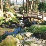 Japanese Strolling Garden